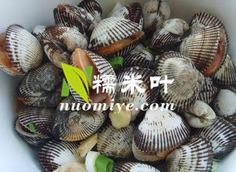 淡水贝类养殖赚钱吗.jpg
